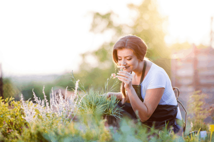 What are the Benefits of Gardening