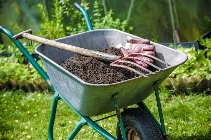 How to Compost: A Composting Guide for Beginners