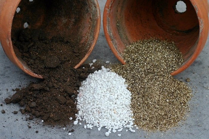 What is Perlite? And how is it Useful in the Garden?