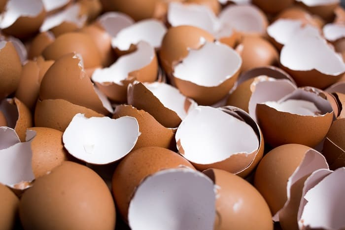 How Can You Compost Egg Shells