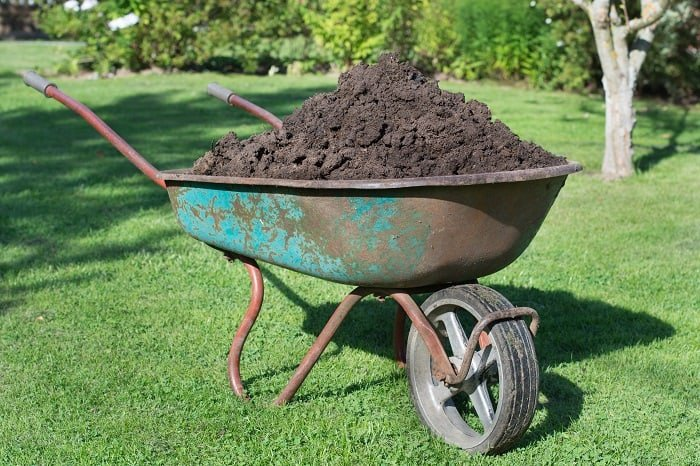 How Much Compost is Needed for a Lawn?