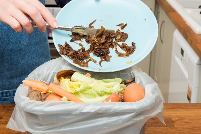 Organic Materials Can Meats Be Composted