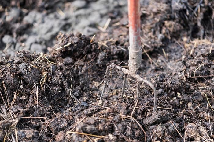 How to Compost Horse Manure Fast